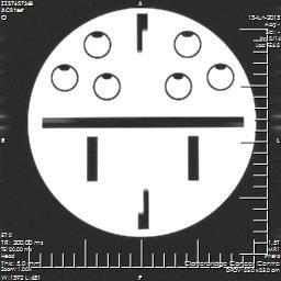 MRT Phantom mit Durchmesser 180 mm
